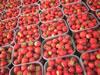 Photo de fraises