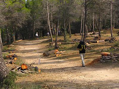 Rando au nord d'Aix en Provence